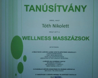 Wellness masszázsok